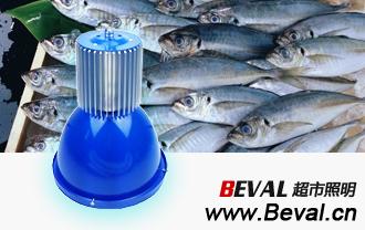 LED水产灯、LED超市海鲜灯、蓝色外罩,特有淡青色光色彰显清爽水灵的水产品